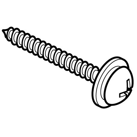 Wall Mounting Screw